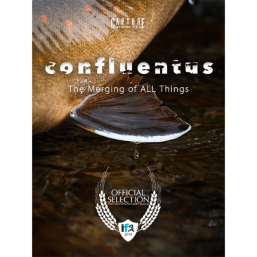 Confluentus – The Merging of All Things